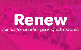 renew_button_for_web